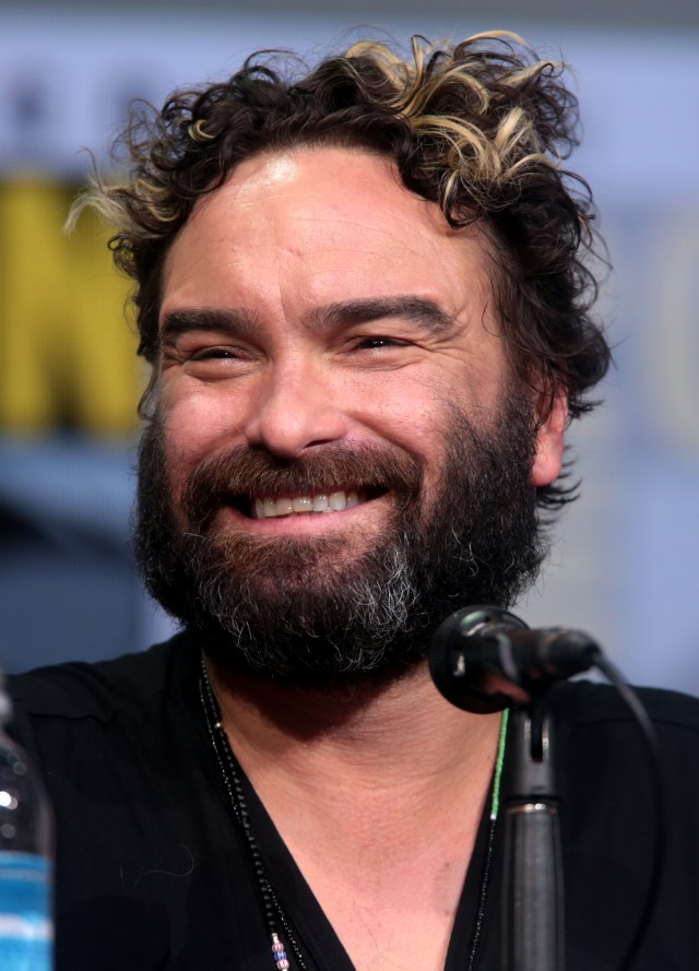 johnny galecki – wikipedia