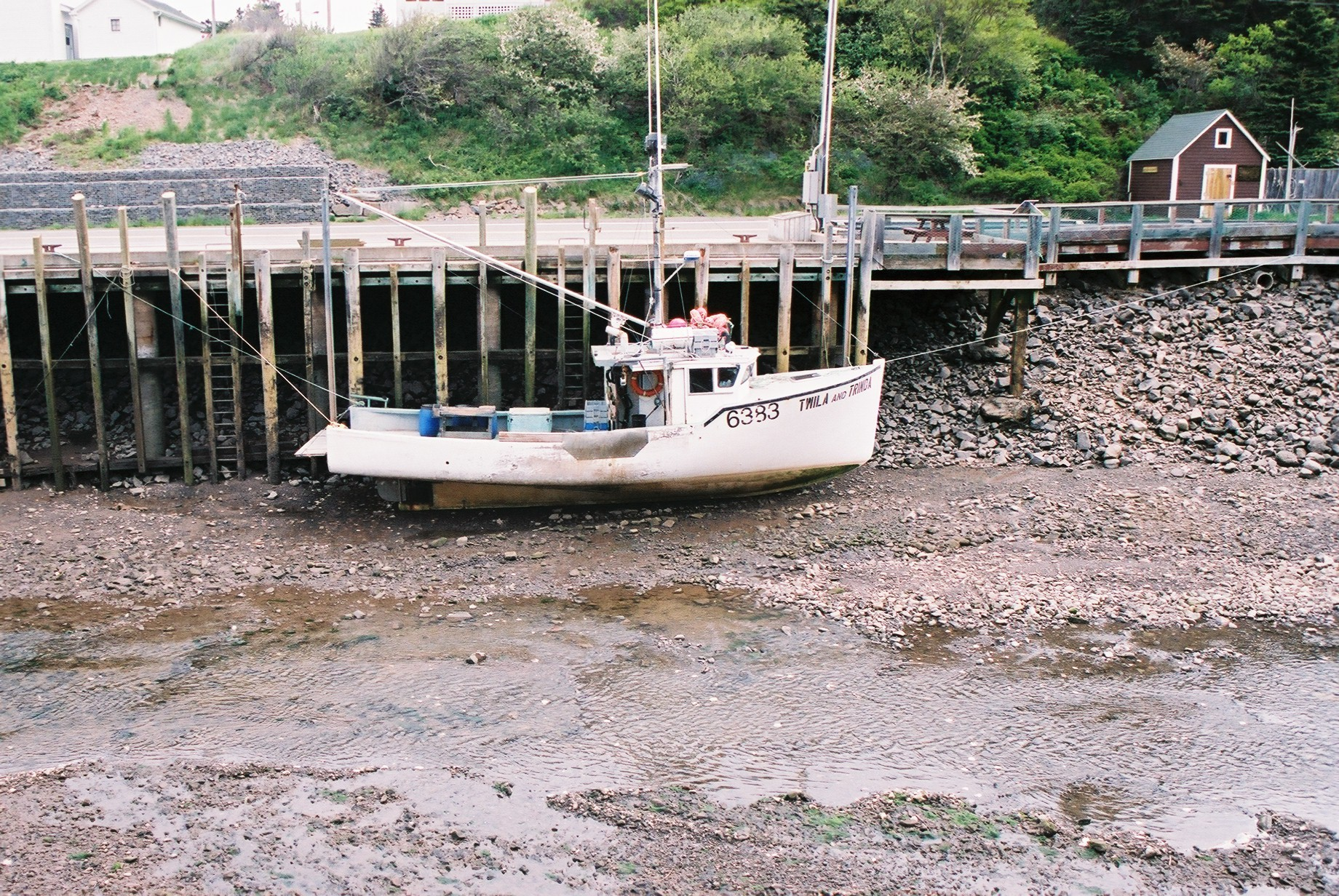 Word Confusion: Tide versus Tied – KD Did It Edits