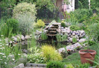 Fountain Pond Landscape Landscaping Ideas