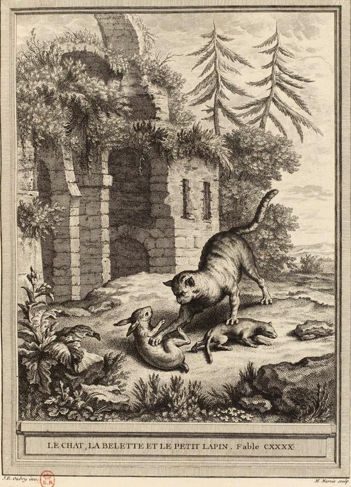 Le Chat, La Belette Et Le Petit Lapin : chat,, belette, petit, lapin, File:Marvie-Oudry-La, Fontaine-Le, Chat,, Belette, Petit, Lapin.jpg, Wikimedia, Commons