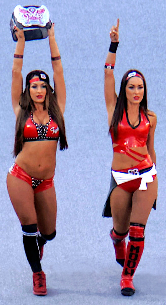 the bella twins wikipedia