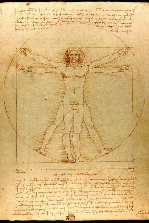Leonardo da Vinci - Vitruvian man