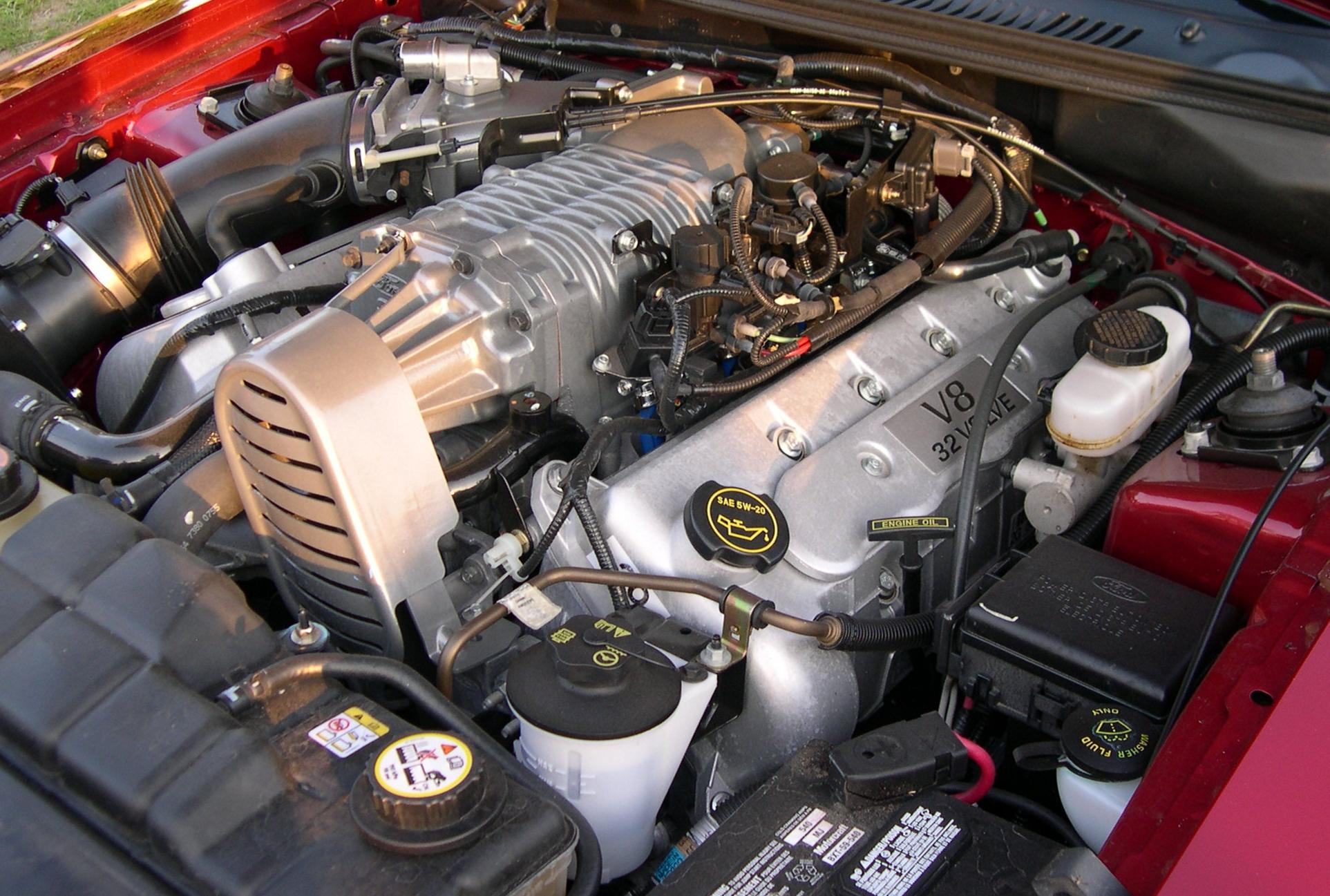 hight resolution of file 2003 ford mustang cobra 32v supercharged engine jpg