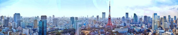Tokyo Japan Panorama