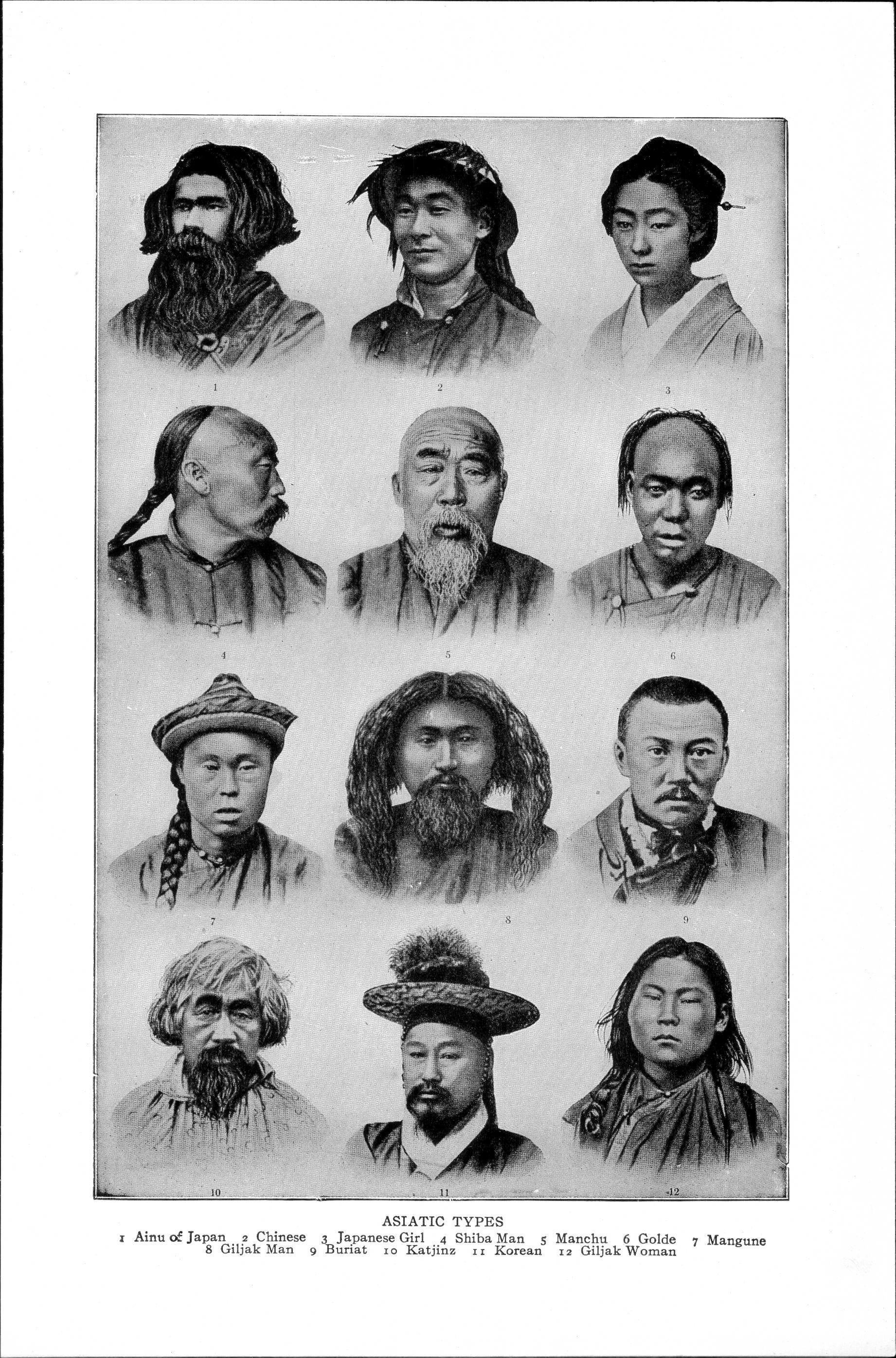 Ciri Ciri Ras Negroid : negroid, Mongoloid, Wikipedia, Bahasa, Indonesia,, Ensiklopedia, Bebas