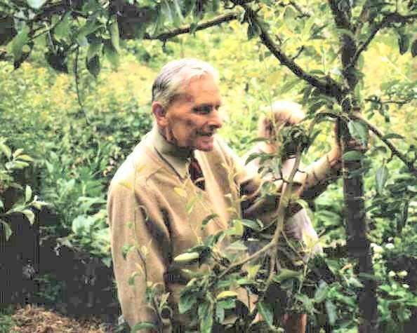 Robert Hart  Wikipdia