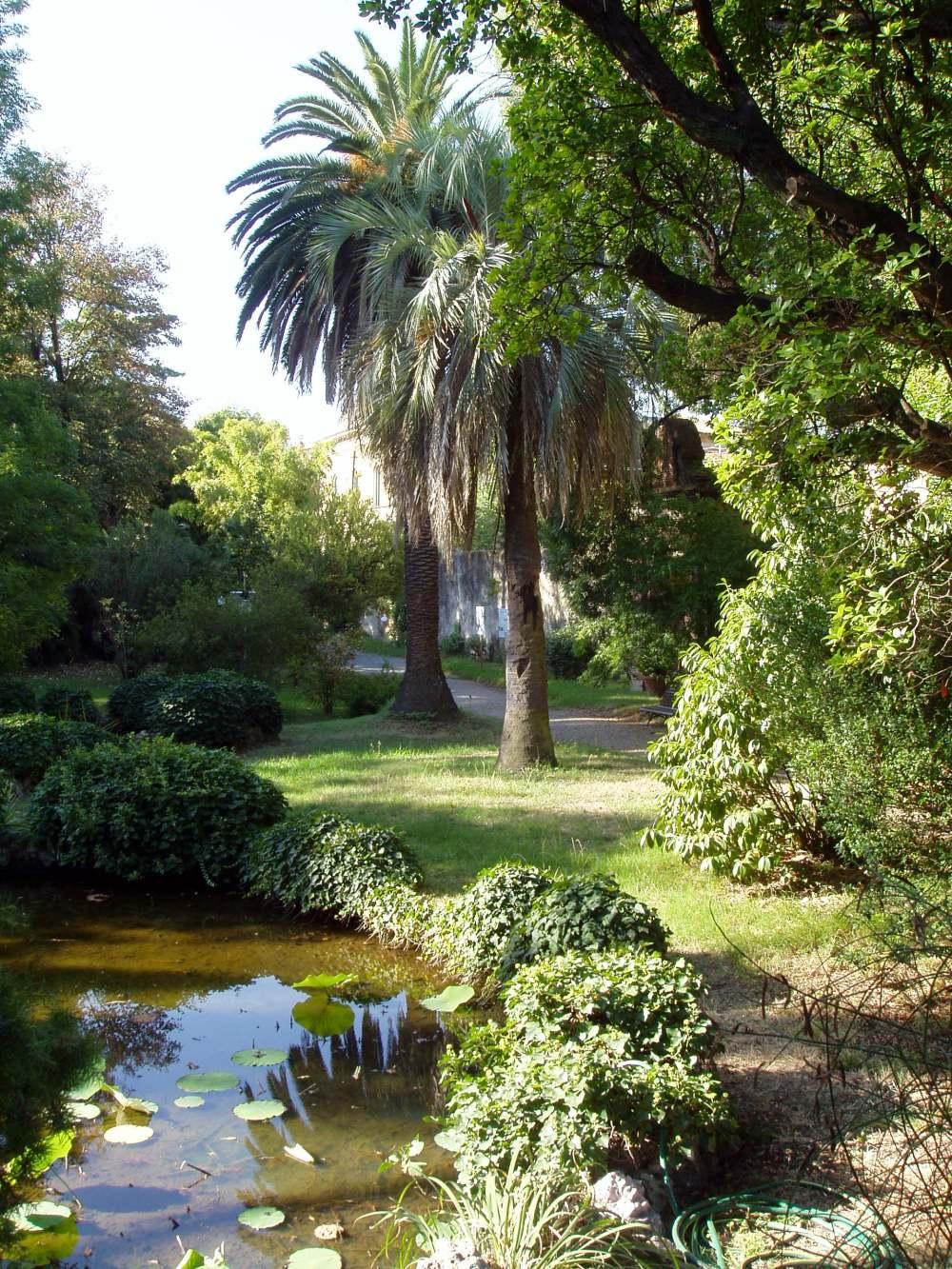 medium resolution of botanical garden