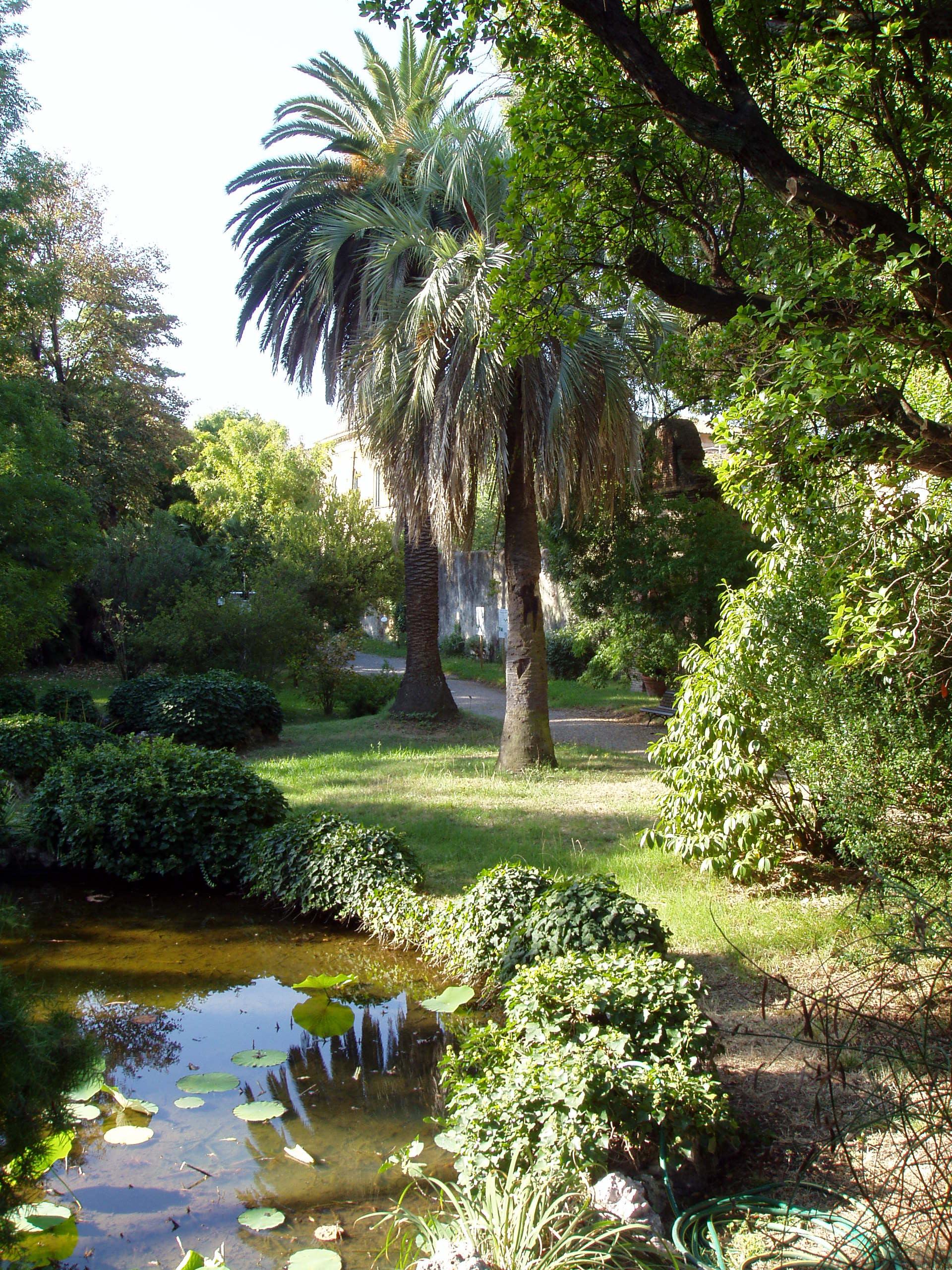 hight resolution of botanical garden