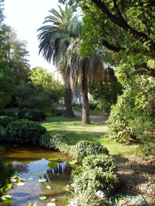 small resolution of botanical garden