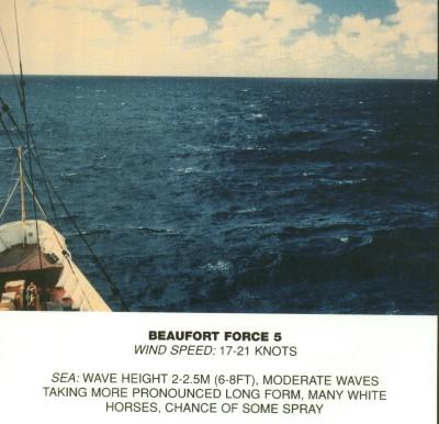 Beaufort scale 5.jpg