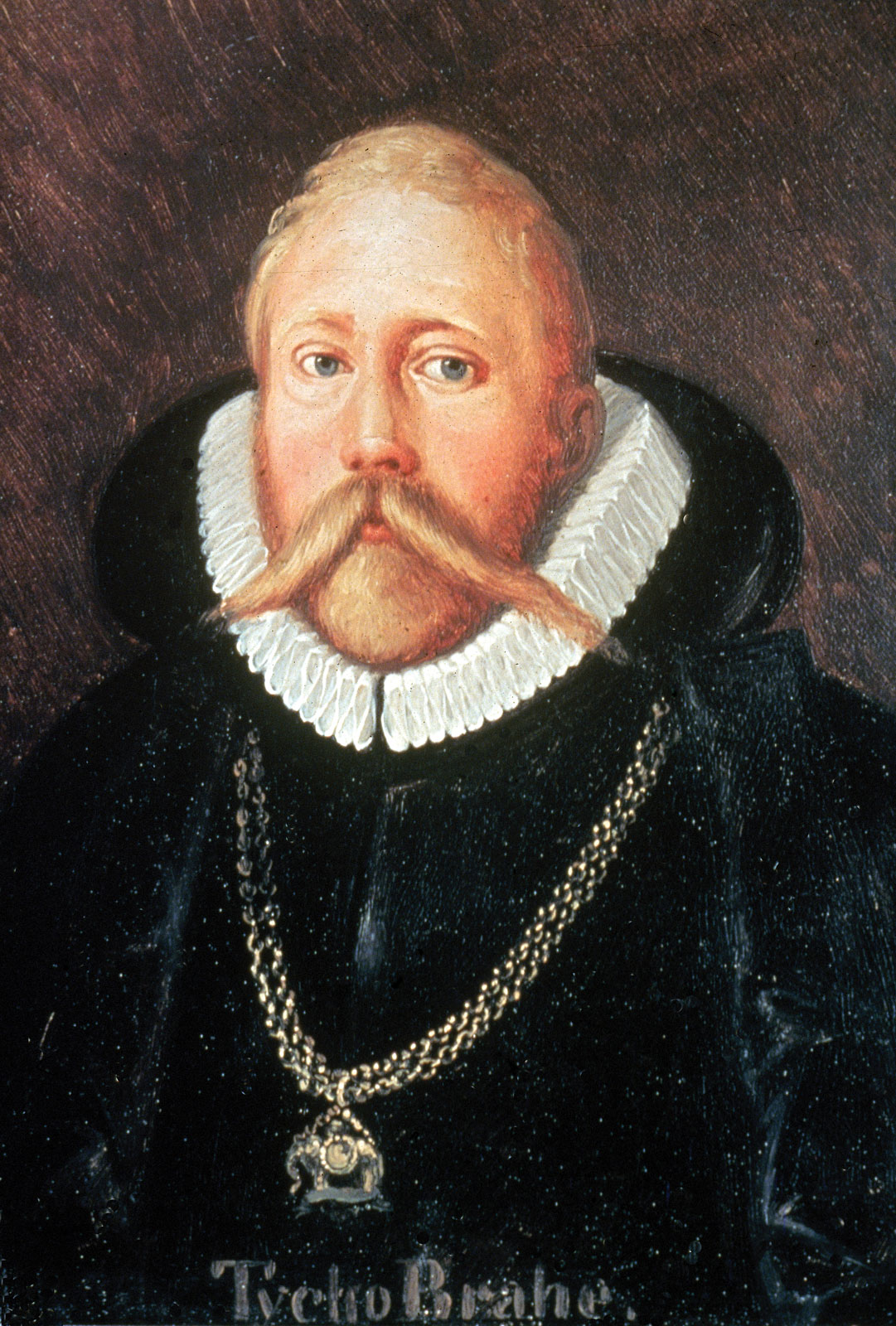 The astronomer Tycho Brahe