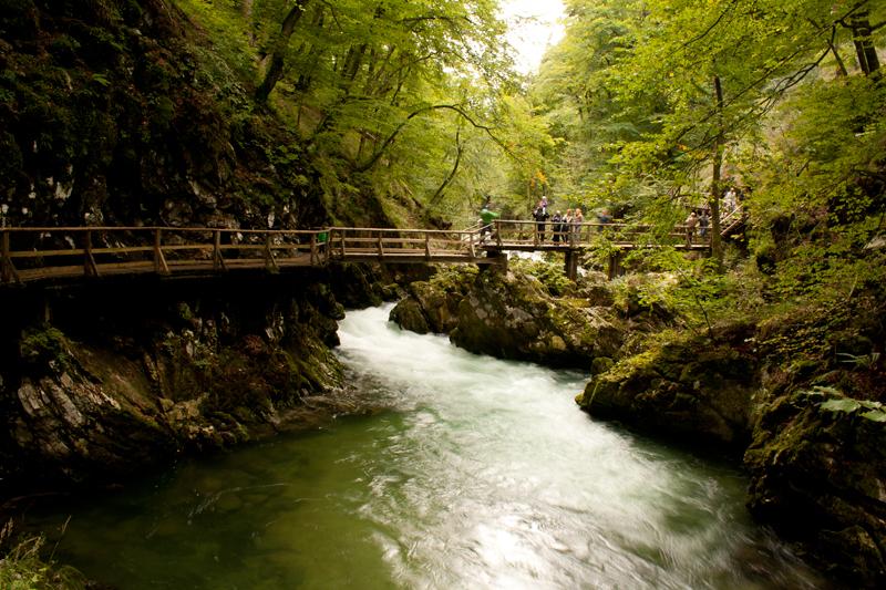 File:Vintgar-Gorge people-on-bridge (8139628676).jpg