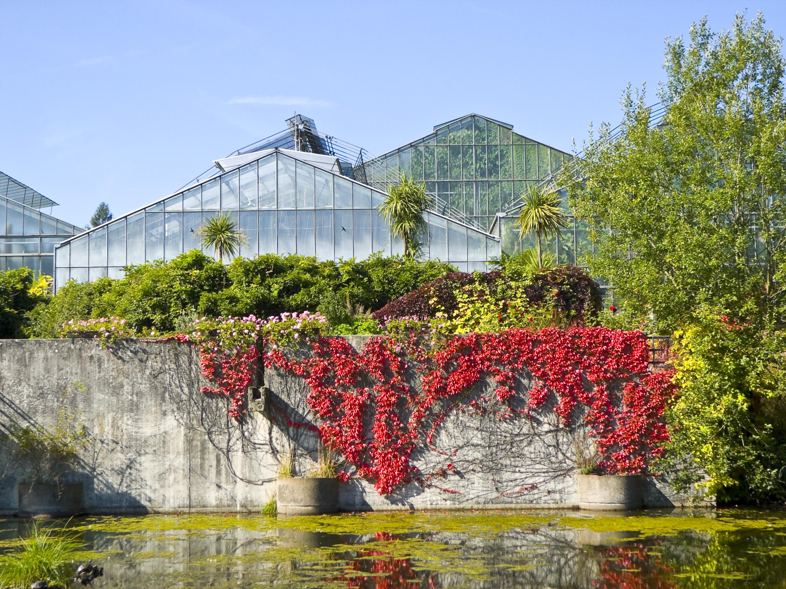 File Neuer Botanischer Garten Marburg 002 Wikimedia Commons