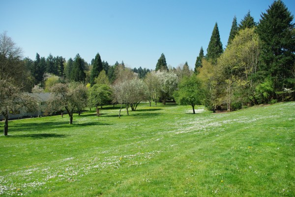 file hillsdale park lawn - portland