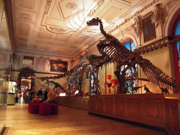 Natural History Museum Naturhistorisches Vienna
