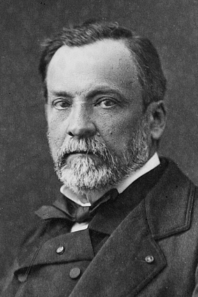 File:Louis Pasteur by Pierre Lamy Petit.jpg