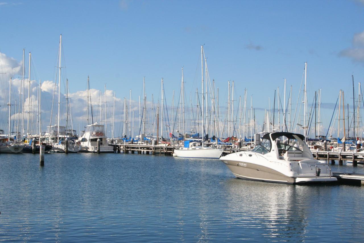 Royal Geelong Yacht Club Wikipedia