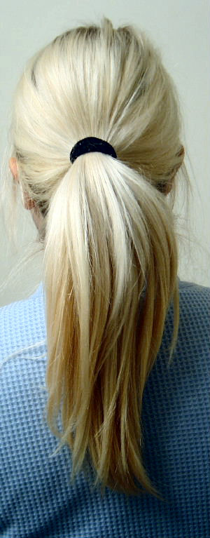 Blonde Pony tail Camera: Sony DSC-P92 Exposure...