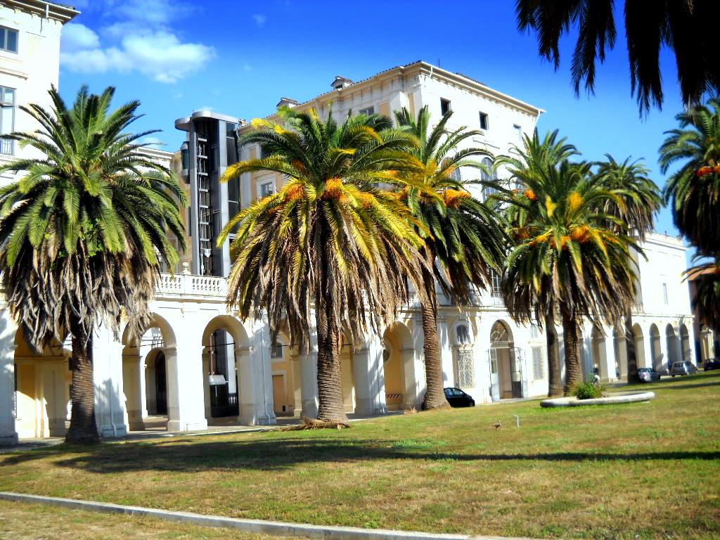 Palazzo Corsini alla Lungara  Wikipedia