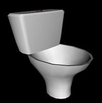 Česky: Záchodová mísa English: Toilet bowl