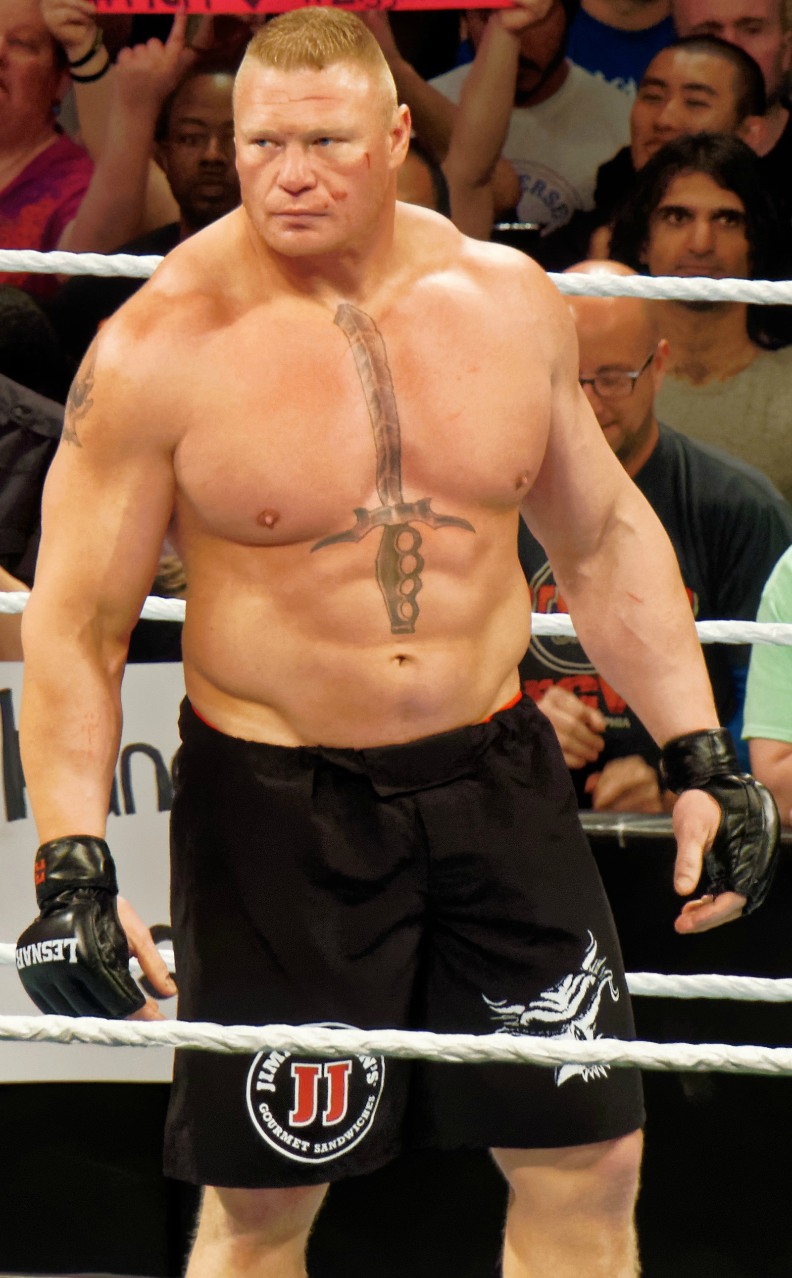 brock lesnar wikipedia