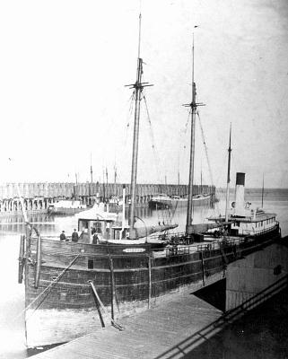 SS Vienna 1873  Wikipedia