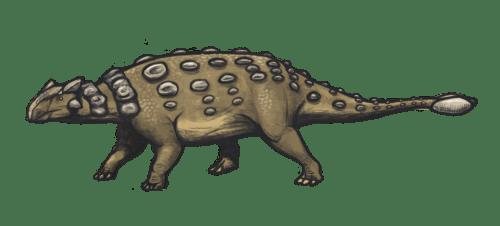 https://i0.wp.com/upload.wikimedia.org/wikipedia/commons/3/36/Ankylosaurus_magniventris_reconstruction.png?resize=500%2C226&ssl=1