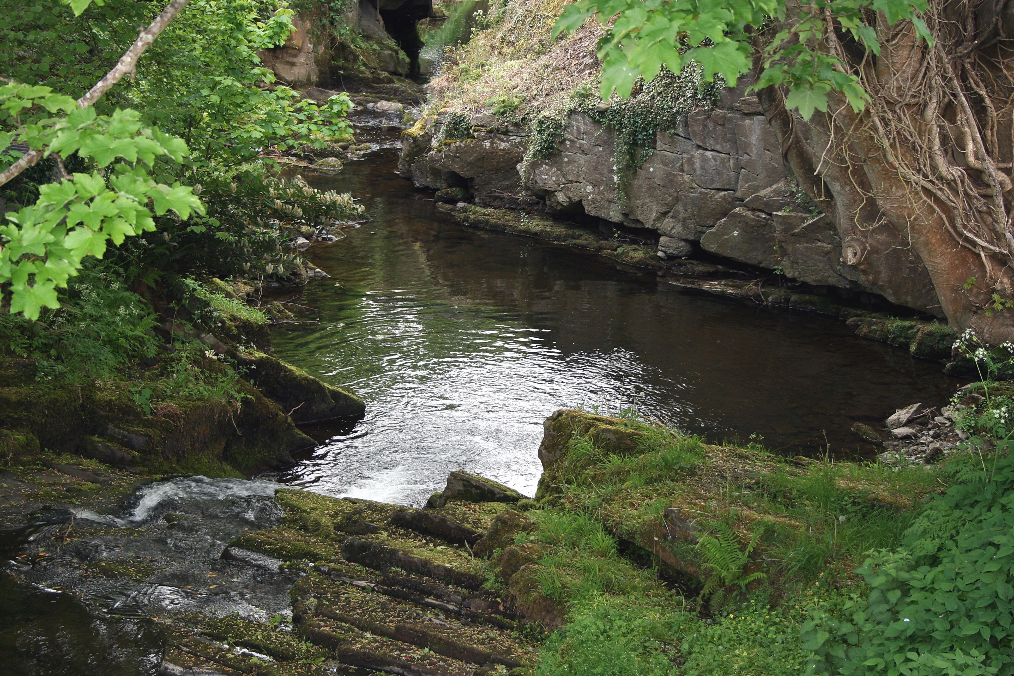 Silver River Ireland