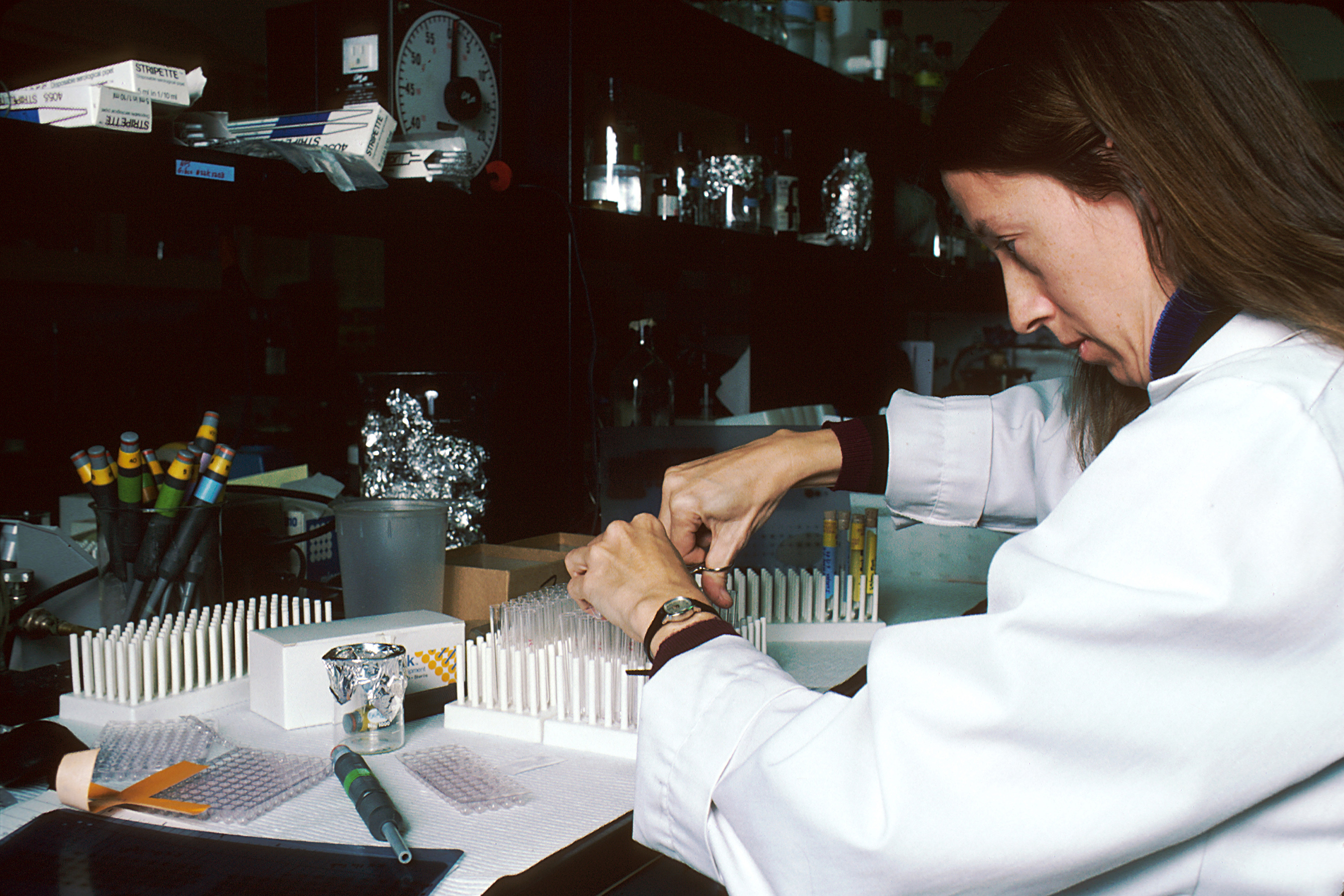 File Technician Performing Laboratory Test