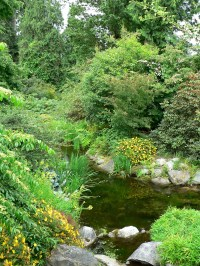 UBC Botanical Garden - Wikipedia