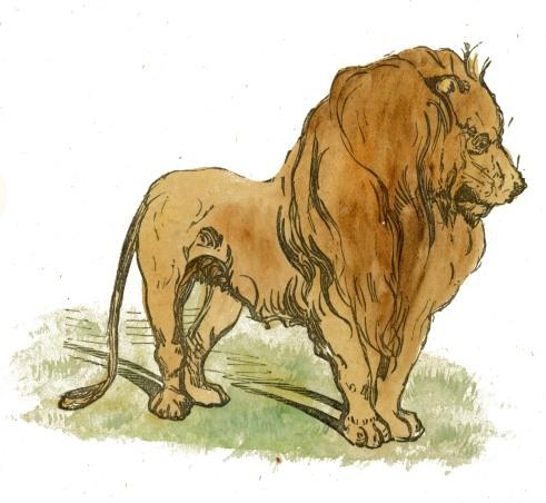 File:King of Beasts.jpg