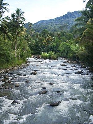 Lingkungan  Wikipedia bahasa Indonesia ensiklopedia bebas