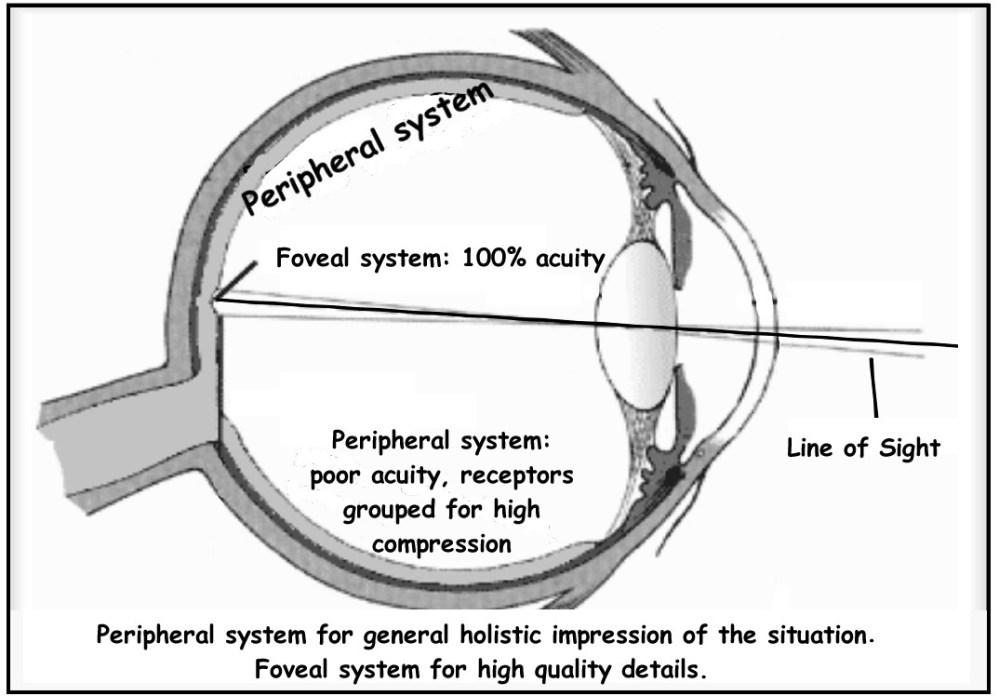 medium resolution of vision system diagram