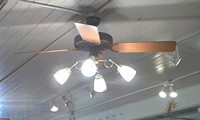 mythbusters ceiling fan
