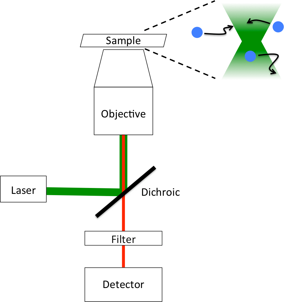 medium resolution of file fluorescence correlation spectroscopy instrument diagram png