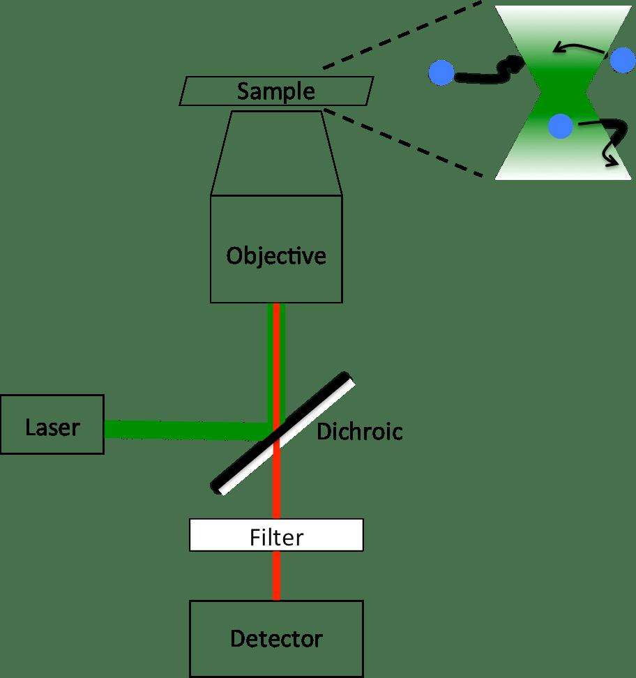 hight resolution of file fluorescence correlation spectroscopy instrument diagram png