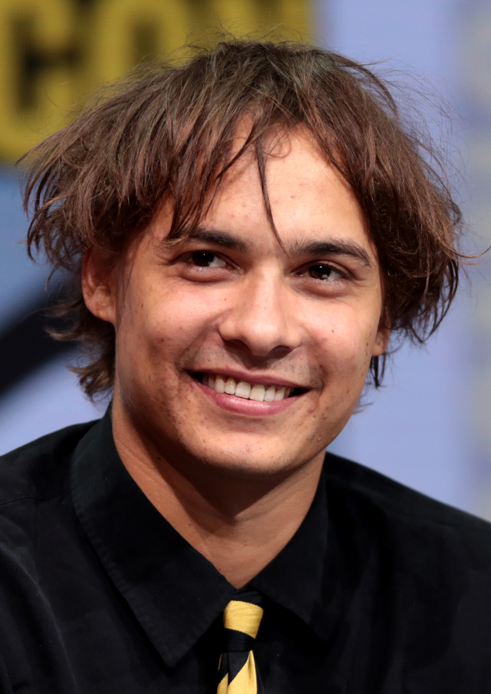 Acteur Fear The Walking Dead : acteur, walking, Frank, Dillane, Wikipédia