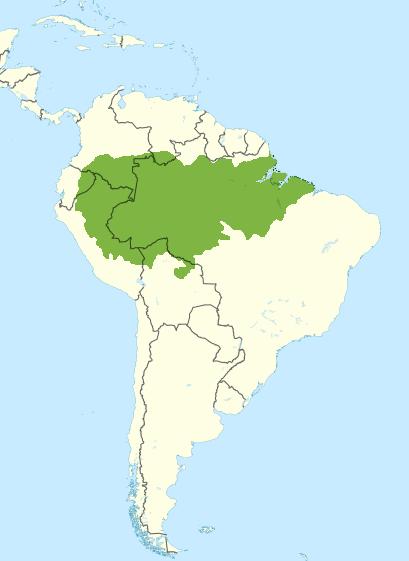 Amazon Rainforest World Map : amazon, rainforest, world, File:South, America, Wikivoyage, Locator, Amazon, Rainforest, (Green).png, Wikimedia, Commons