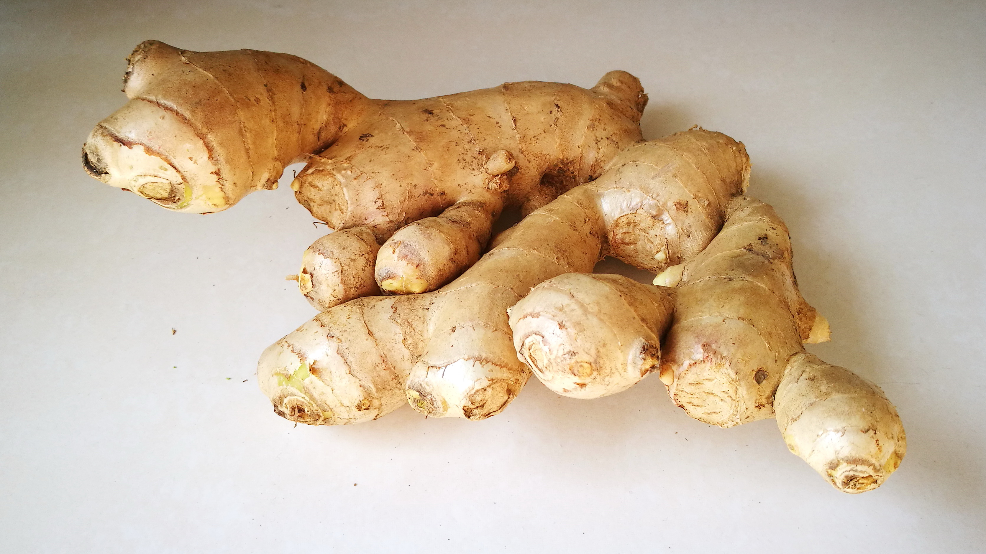 File:Ginger rhizome.jpg - Wikimedia Commons
