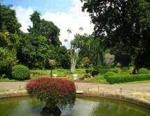 Sri Lanka Botanical Garden