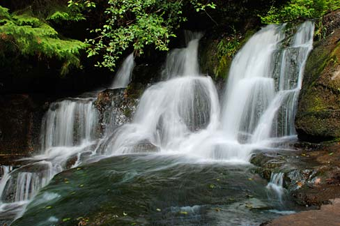 Water Fall Hd Wallpaper 4k File Alsea Falls Benton County Oregon Scenic Images