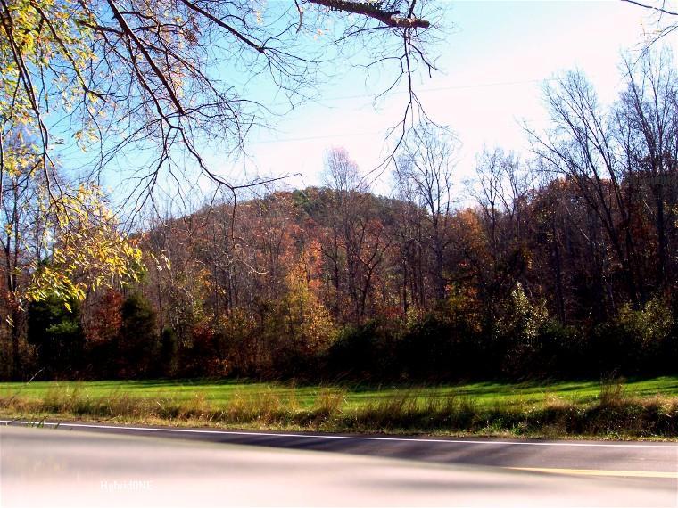 Little Mountain South Carolina  Wikipedia