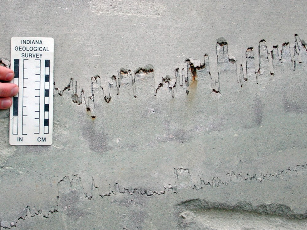medium resolution of stylolite