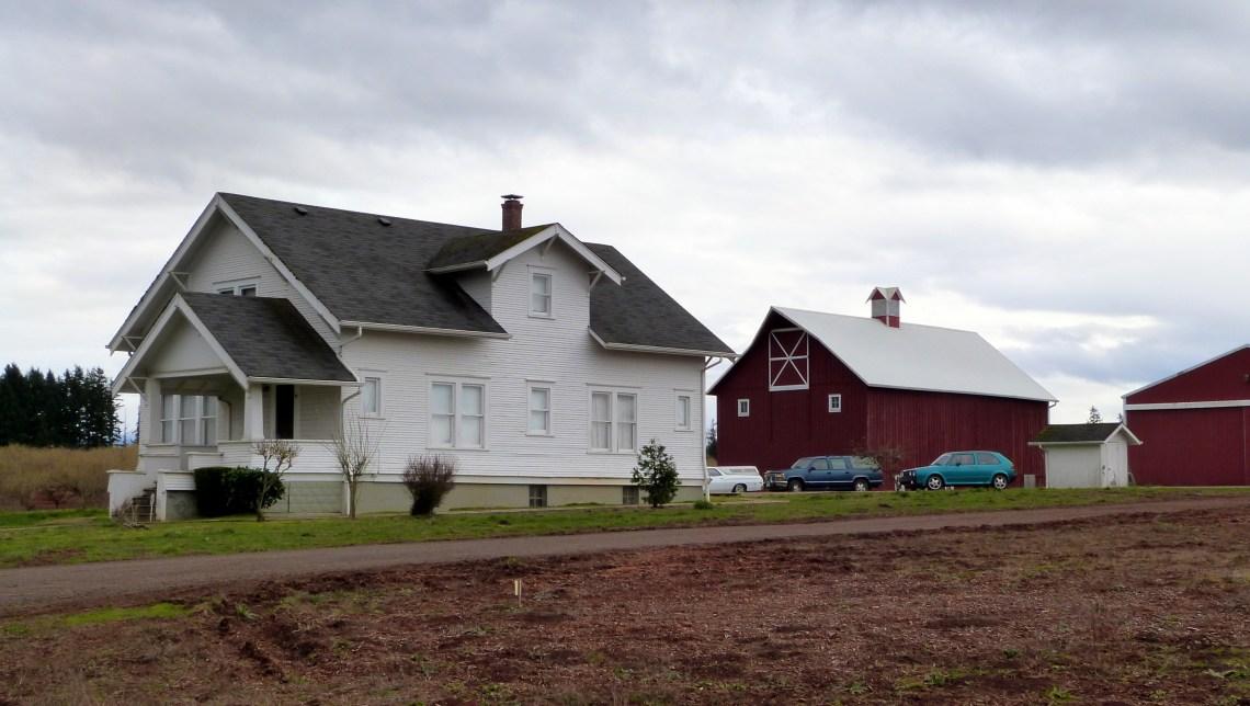 Farmhouse Floor