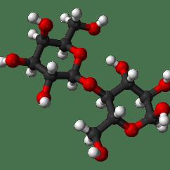 Carbohydrate Structure Diagram Mono Block Wiring Lattosio Wikipedia