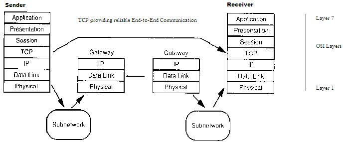 Network Protocols Diagram : 25 Wiring Diagram Images