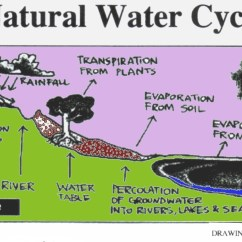 Water Cycle Diagram With Explanation There Will Come Soft Rains Plot Example Of Text Generic