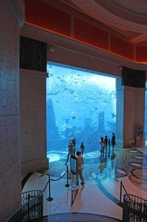 File Atlantis Palm Hotel Aquarim - Wikipedia