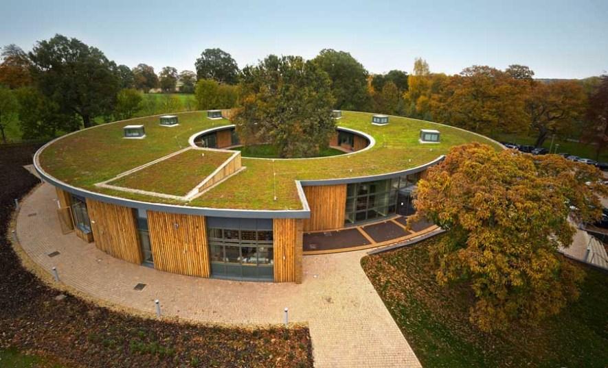 green roof, roof garden