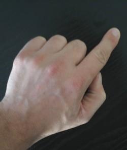 English: index finger